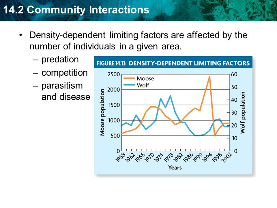 Density-dependent limiting factors are affected by the number of individuals in a given area.