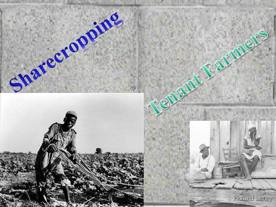 Sharecropping Tenant Farmers