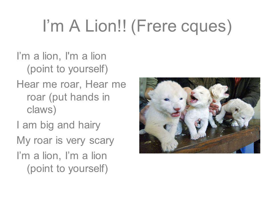 I'm A Lion!! (Frere cques)