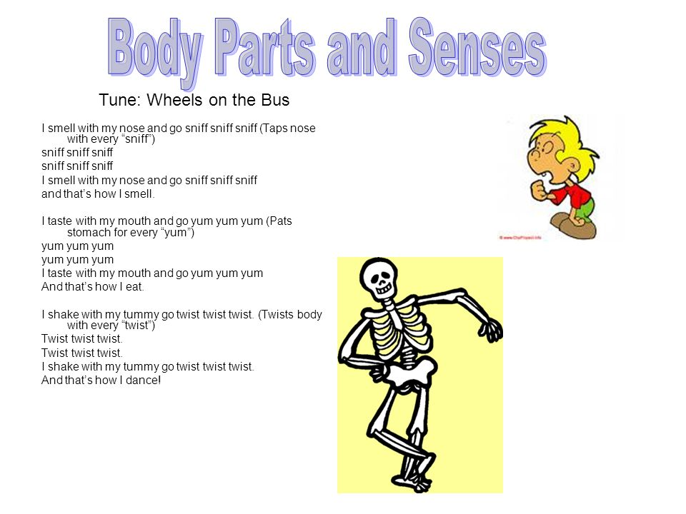 Body Parts and Senses Tune: Wheels on the Bus