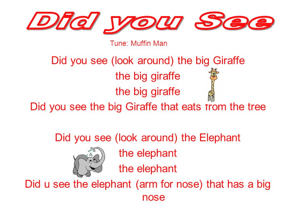Did you See Did you see (look around) the big Giraffe the big giraffe