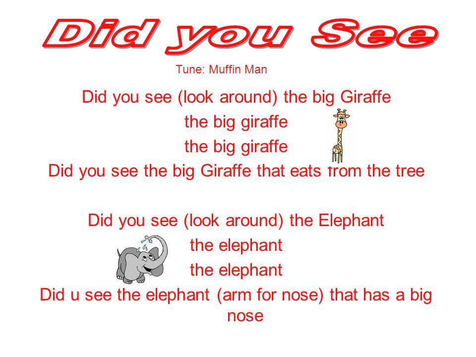 Did you See Did you see (look around) the big Giraffe the big giraffe