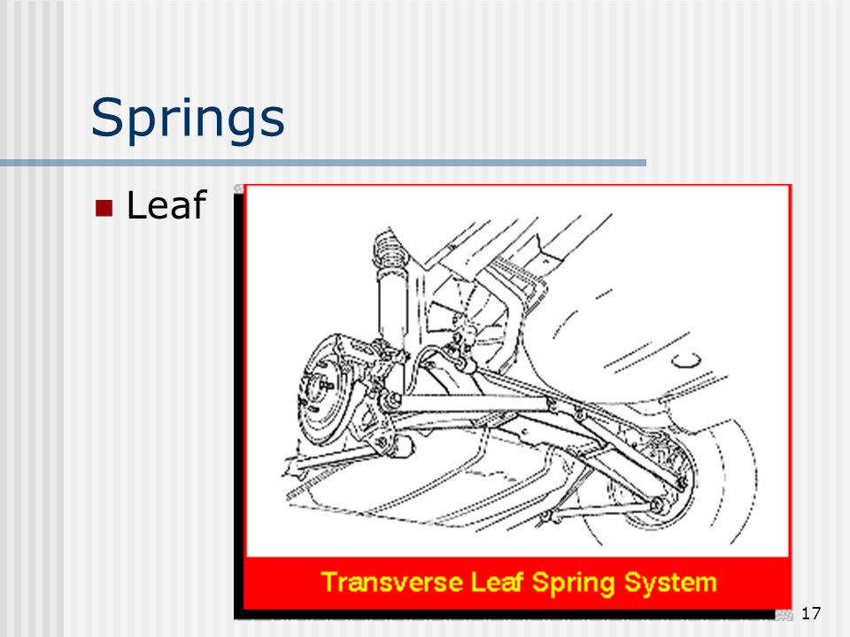 Springs Leaf