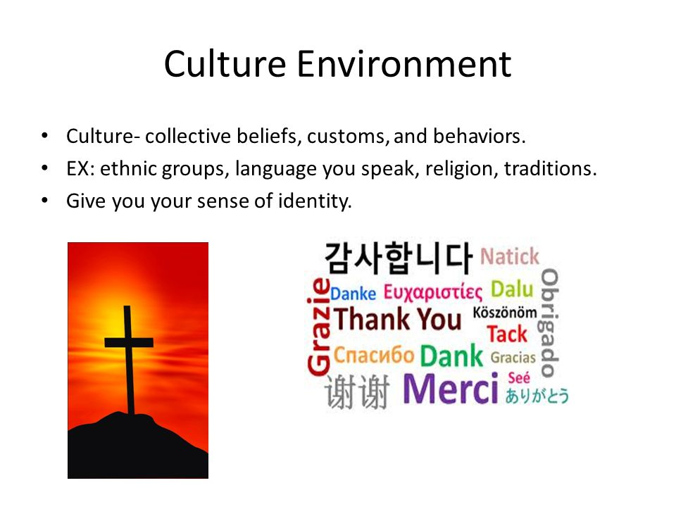 Culture Environment Culture- collective beliefs, customs, and behaviors. EX: ethnic groups, language you speak, religion, traditions.