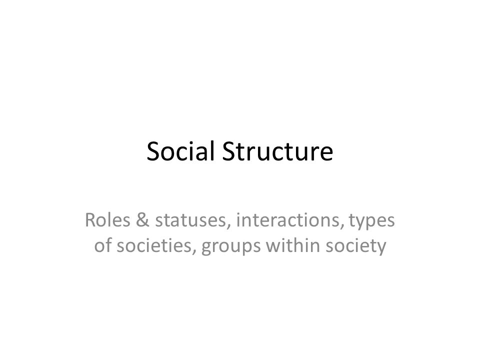 Social Structure Roles & statuses, interactions, types of societies, groups within society