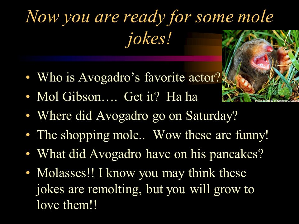 Now you are ready for some mole jokes!