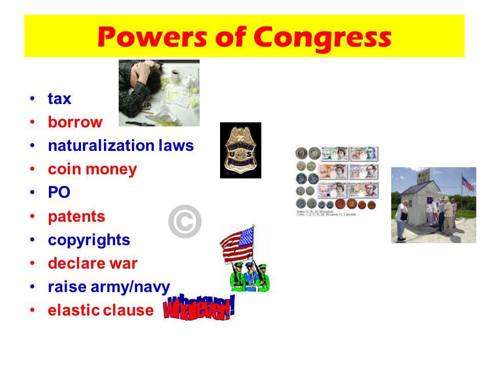 Powers of Congress tax borrow naturalization laws coin money PO