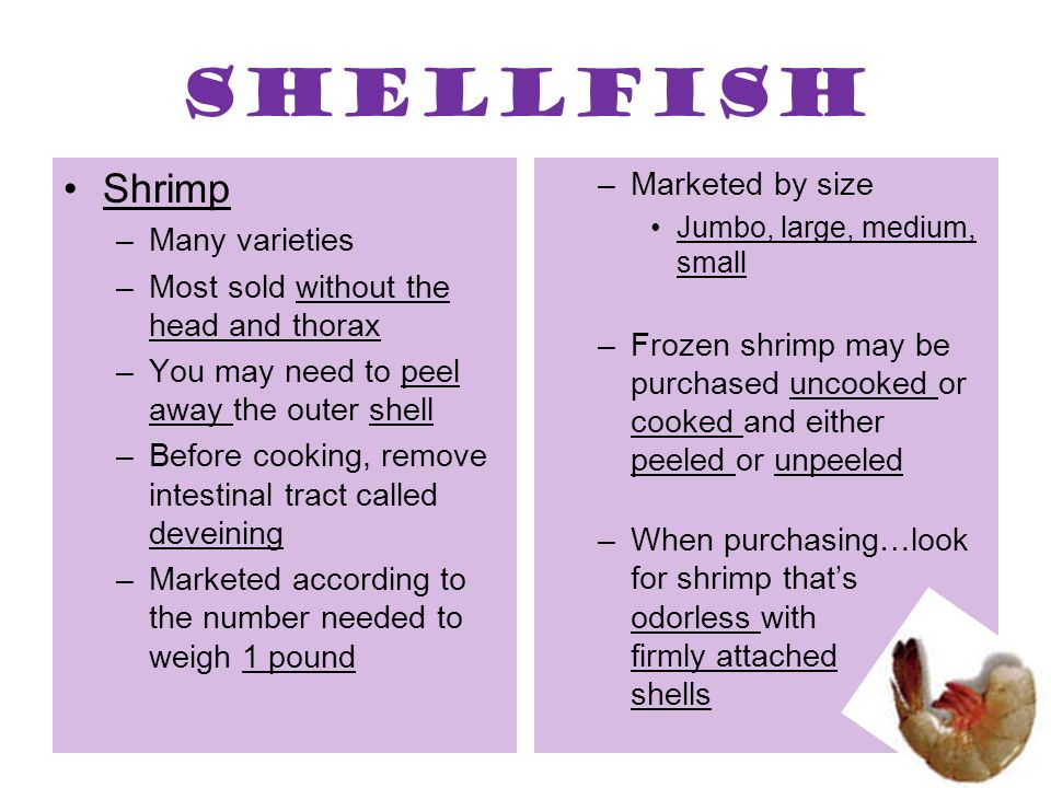 Shellfish Shrimp Marketed by size Many varieties