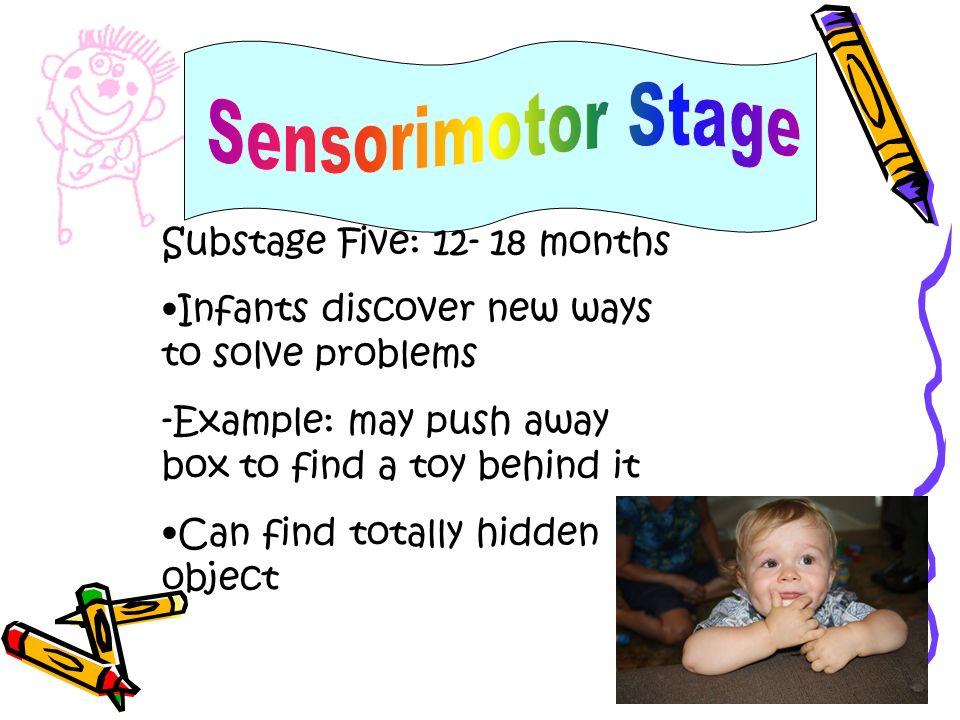 Sensorimotor Stage Substage Five: 12- 18 months