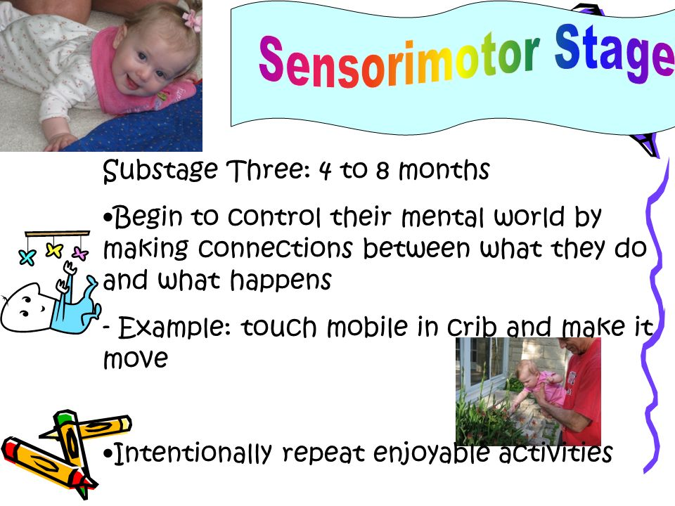 Sensorimotor Stage Substage Three: 4 to 8 months