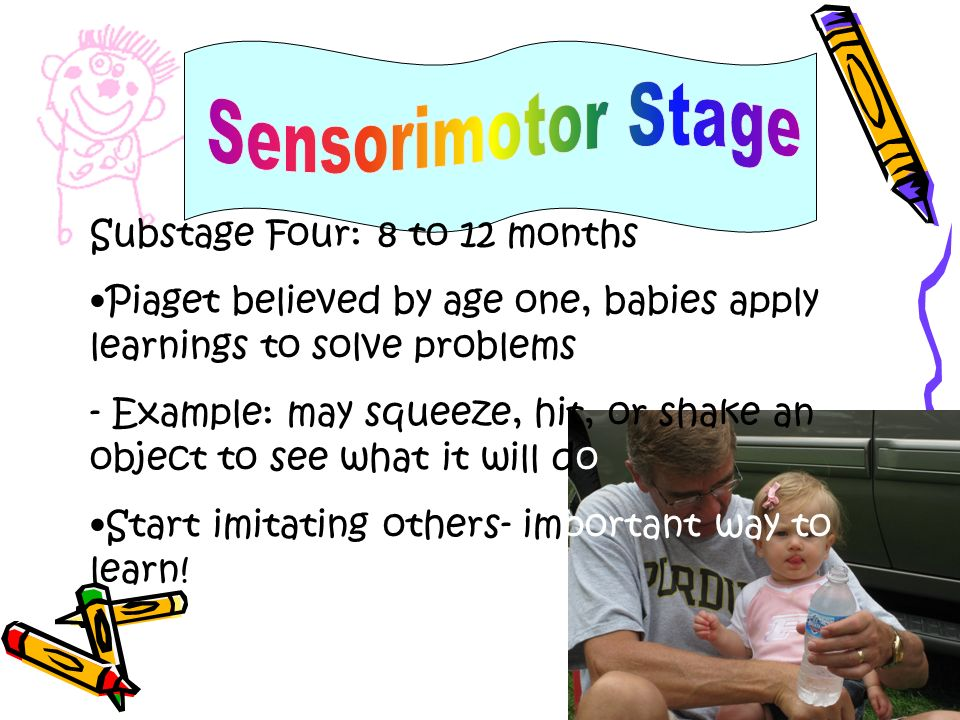 Sensorimotor Stage Substage Four: 8 to 12 months