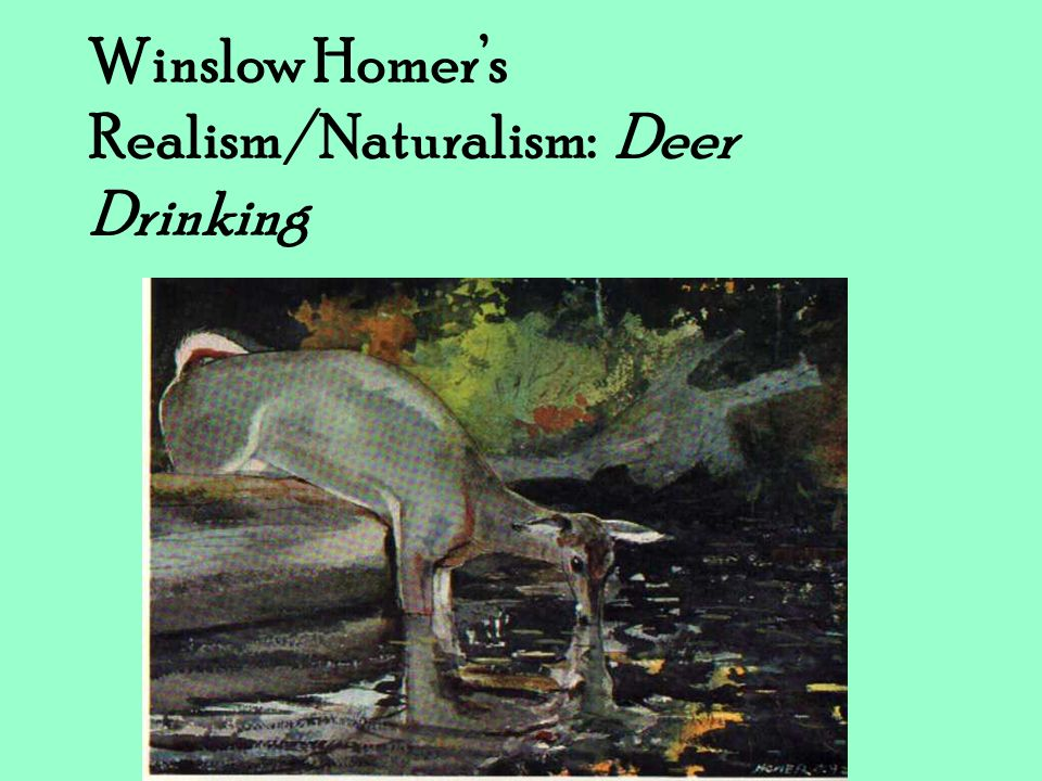 Winslow Homer's Realism/Naturalism: Deer Drinking