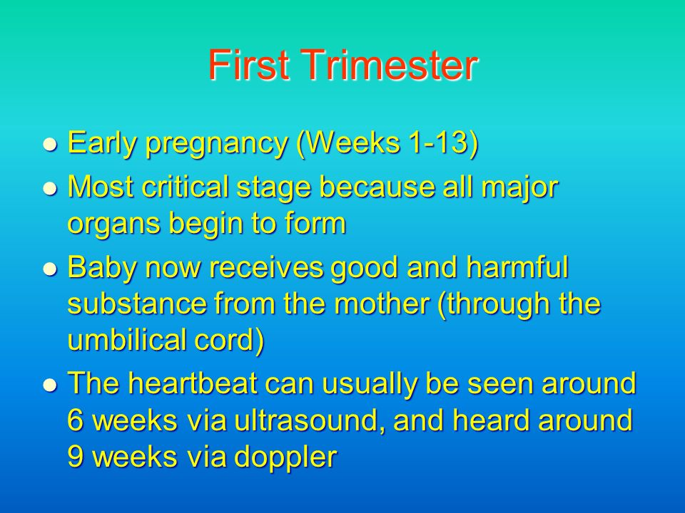 First Trimester Early pregnancy (Weeks 1-13)