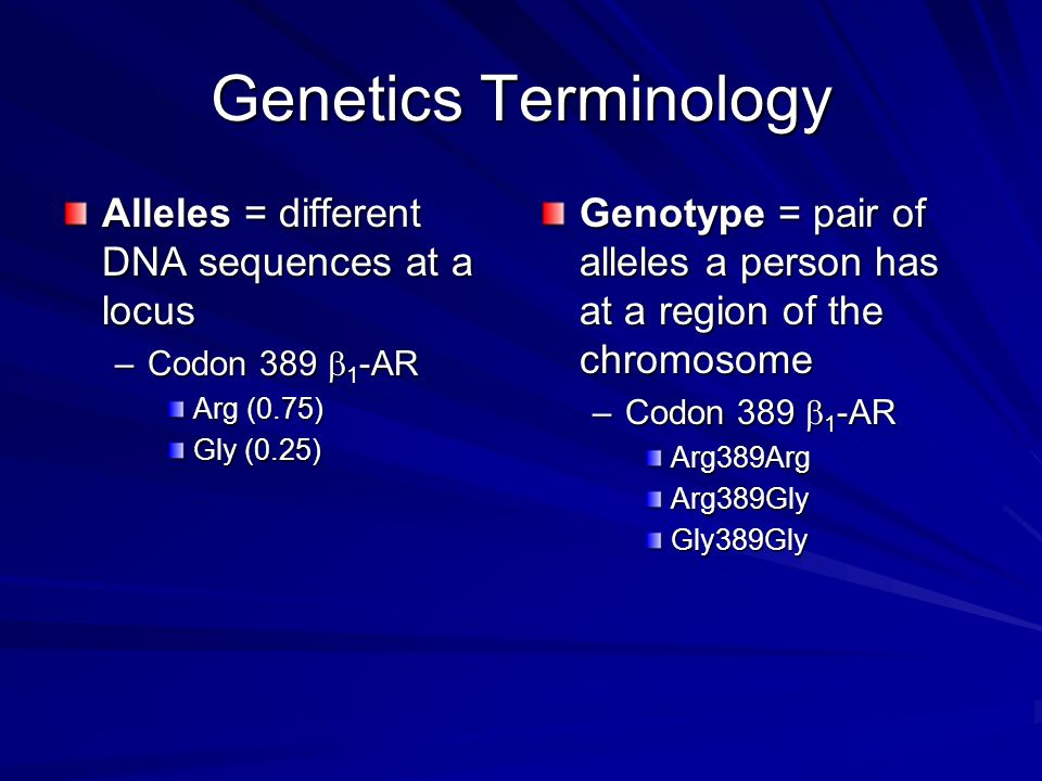 Genetics Terminology Alleles = different DNA sequences at a locus