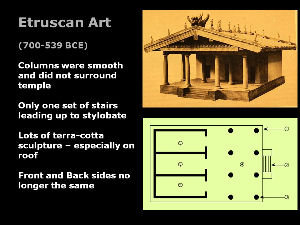 Etruscan Art (700-539 BCE) Columns were smooth and did not surround temple. Only one set of stairs leading up to stylobate.