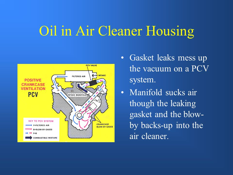 Oil in Air Cleaner Housing