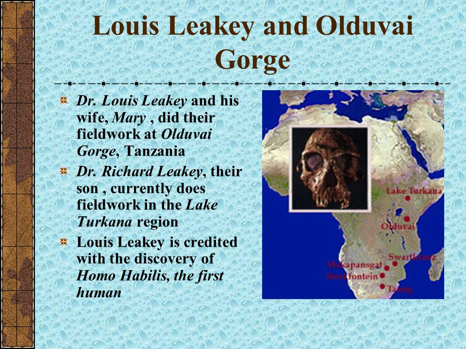 Louis Leakey and Olduvai Gorge