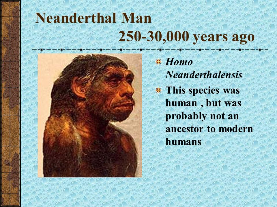 Neanderthal Man 250-30,000 years ago