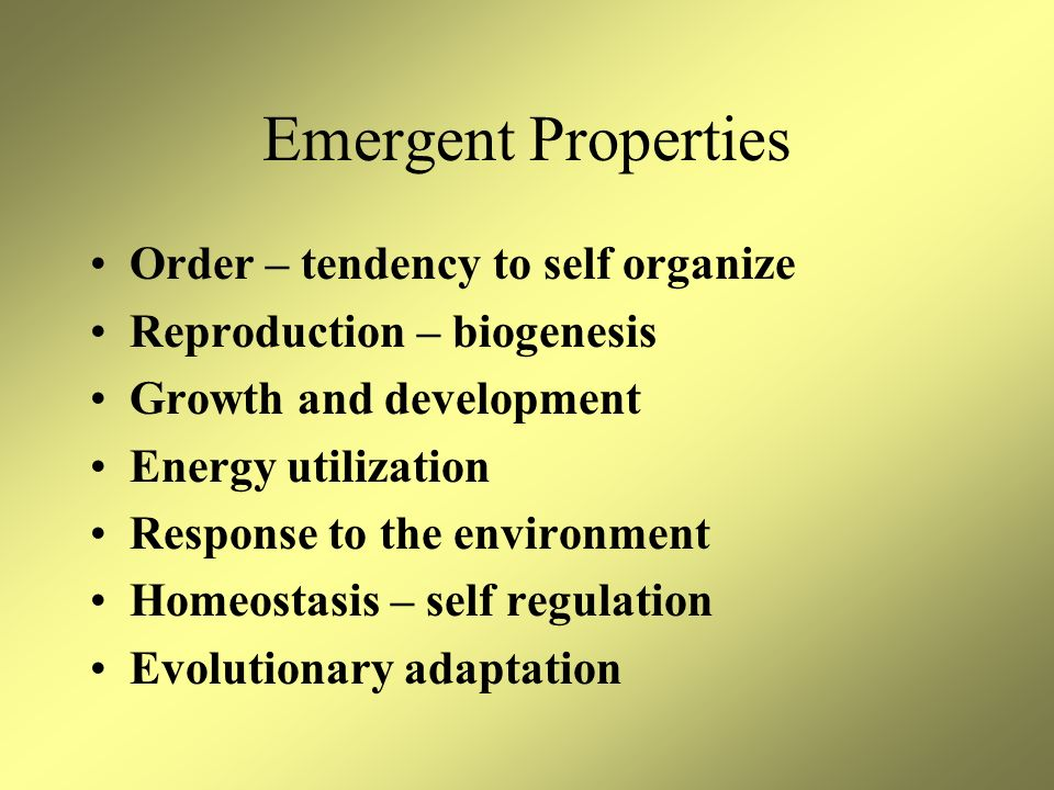 Emergent Properties Order – tendency to self organize