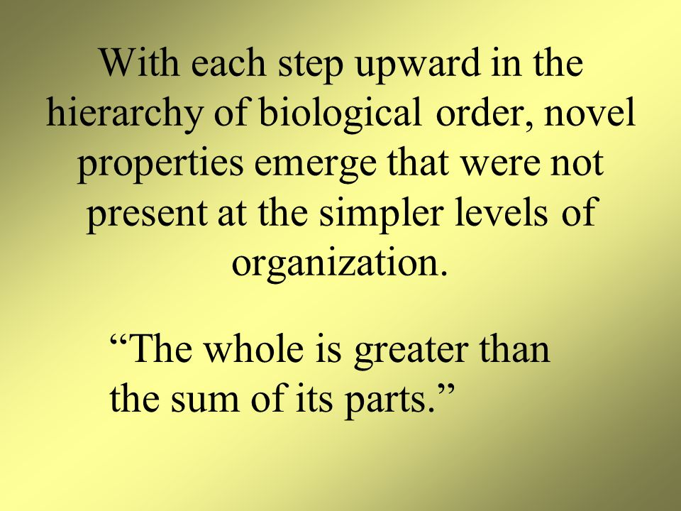 With each step upward in the hierarchy of biological order, novel properties emerge that were not present at the simpler levels of organization.