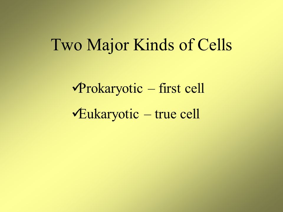 Two Major Kinds of Cells