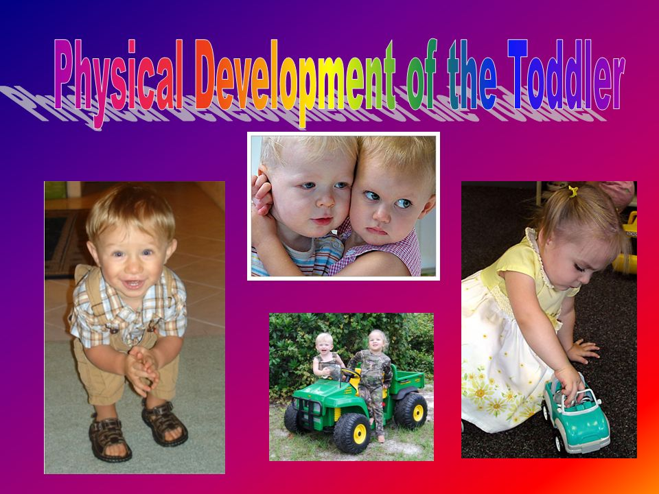 Physical Development of the Toddler