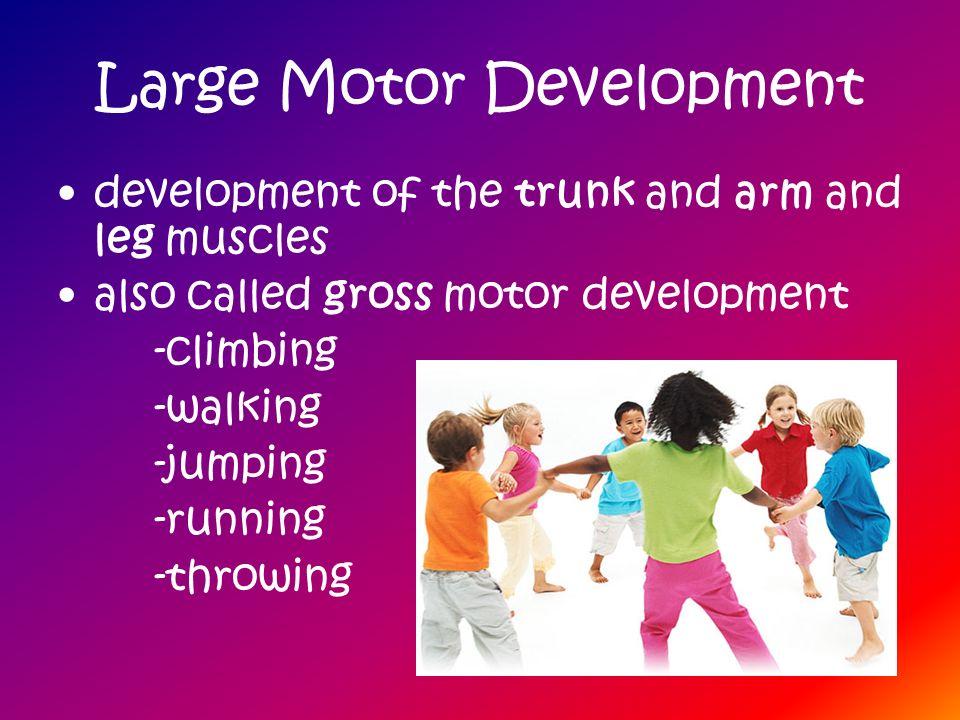 Large Motor Development