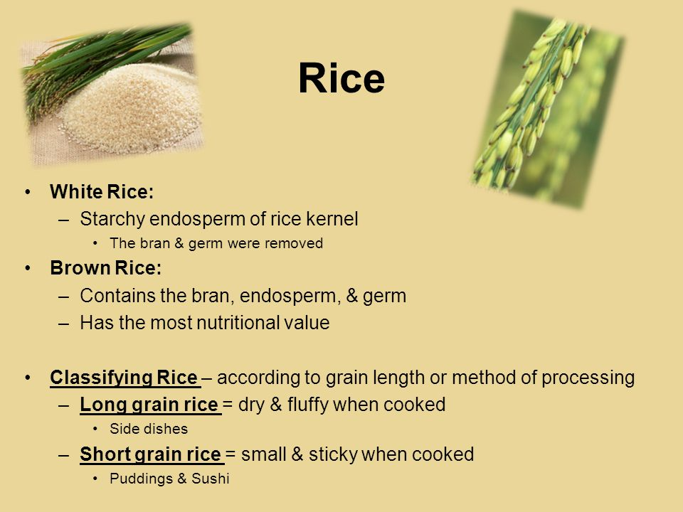 Rice White Rice: Starchy endosperm of rice kernel Brown Rice: