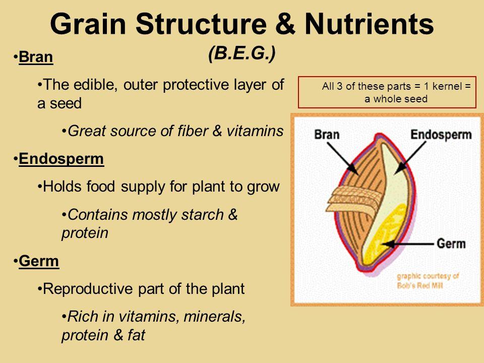 Grain Structure & Nutrients (B.E.G.)