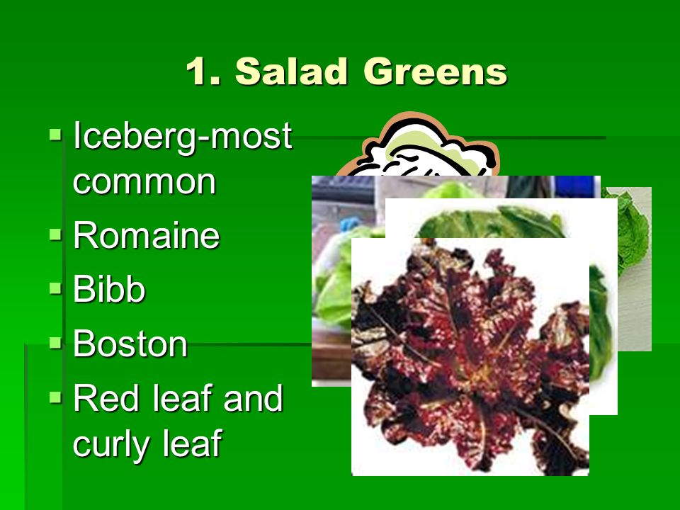 1. Salad Greens Iceberg-most common Romaine Bibb Boston Red leaf and curly leaf