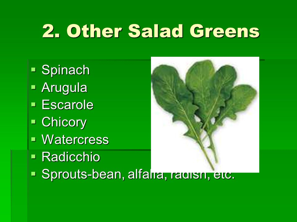 2. Other Salad Greens Spinach Arugula Escarole Chicory Watercress