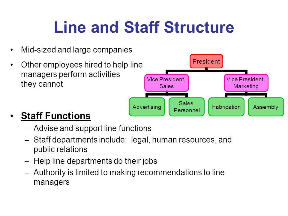 organizational structure of midsize company