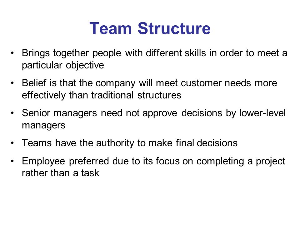 Team Structure Brings together people with different skills in order to meet a particular objective.
