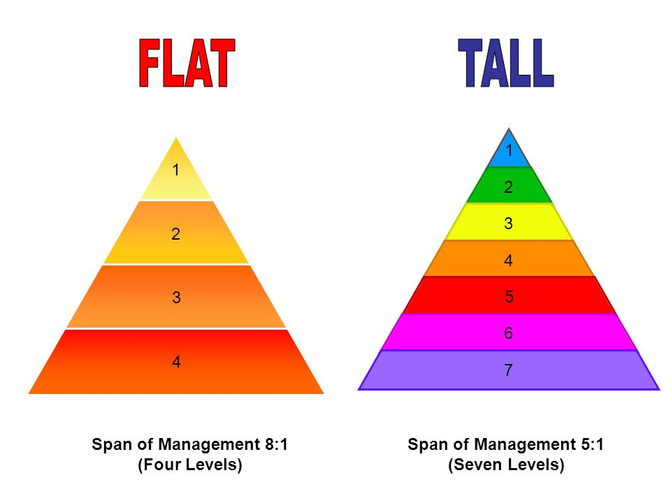 FLAT TALL Span of Management 8:1 (Four Levels)