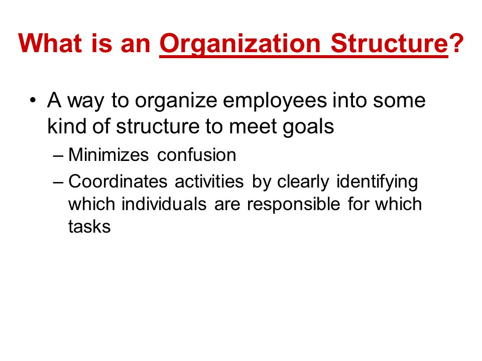 What is an Organization Structure