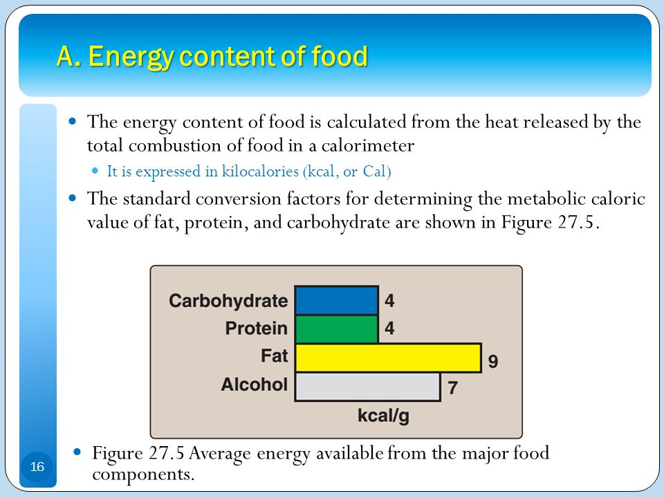 A. Energy content of food