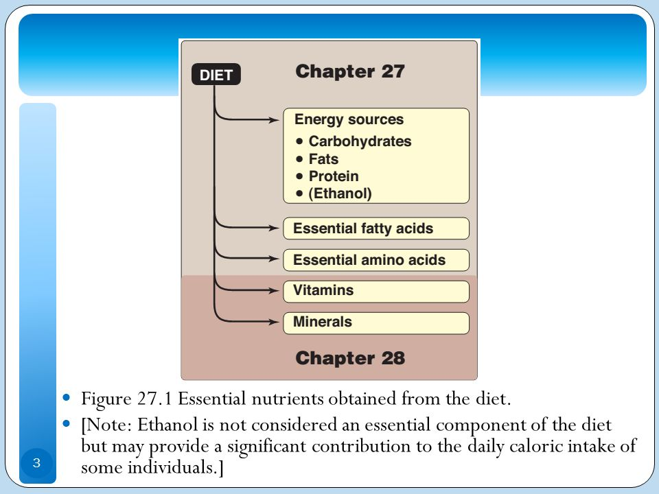 Figure 27.1 Essential nutrients obtained from the diet.