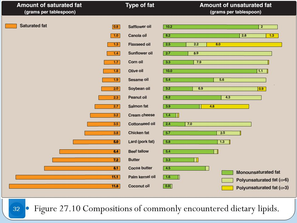 . Figure 27.10 Compositions of commonly encountered dietary lipids.