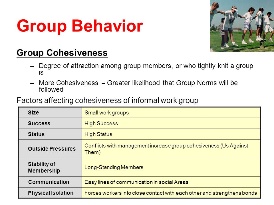 Group Behavior Group Cohesiveness