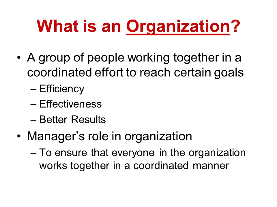 What is an Organization