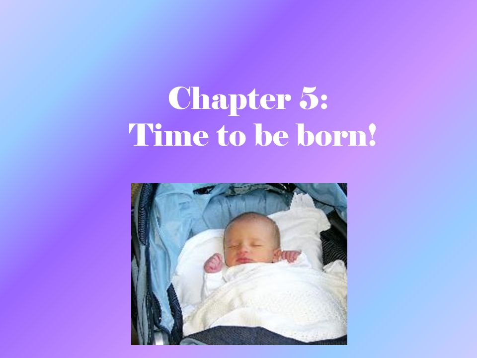 Chapter 5: Time to be born!