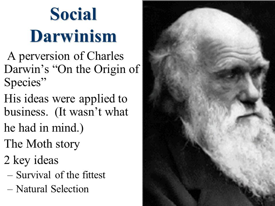 Social Darwinism A perversion of Charles Darwin's On the Origin of Species His ideas were applied to business. (It wasn't what.