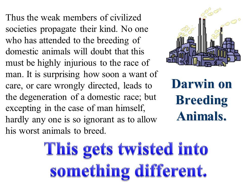 Darwin on Breeding Animals.