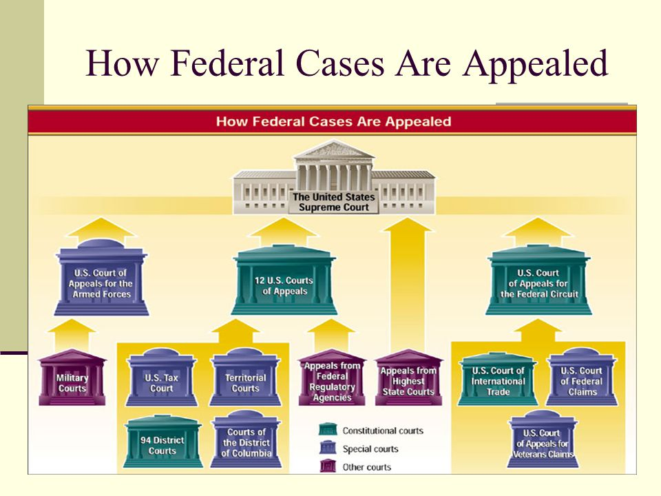 How Federal Cases Are Appealed