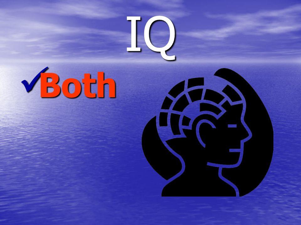 IQ Both