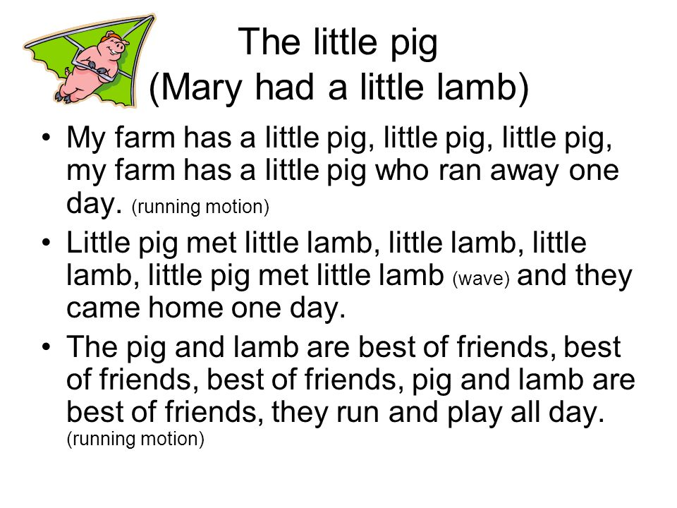 The little pig (Mary had a little lamb)