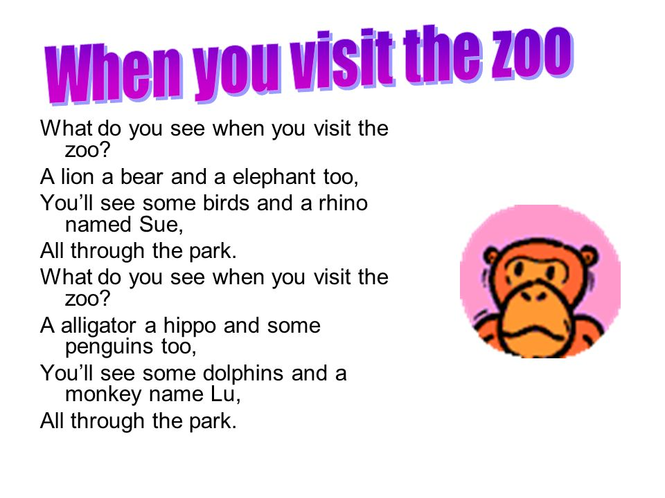 When you visit the zoo What do you see when you visit the zoo