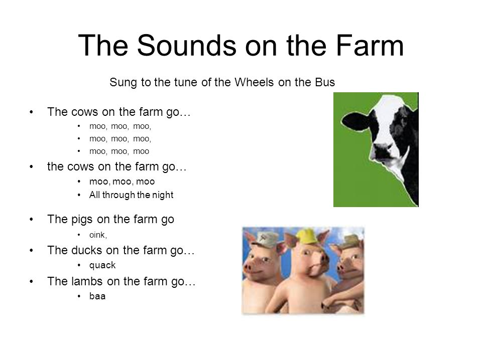 The Sounds on the Farm Sung to the tune of the Wheels on the Bus