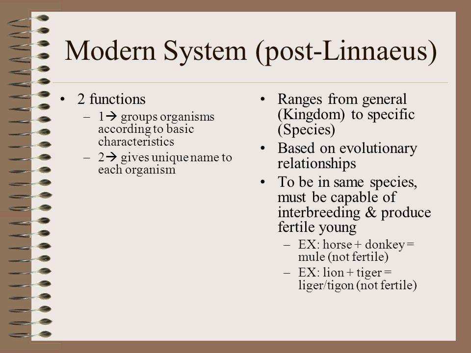 Modern System (post-Linnaeus)