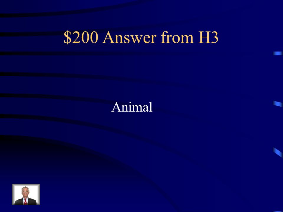 $200 Answer from H3 Animal